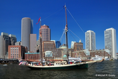 A View of the Tall Ships Against the Boston Skyline